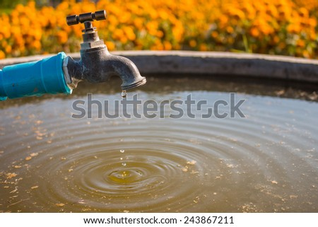 brass faucet in cement pool for agriculture. - stock photo