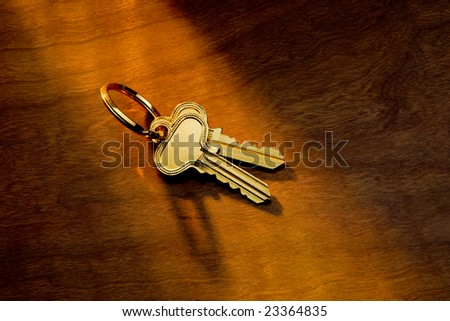 Brass house keys in sunlight on a wood background