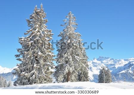 Braunwald, Switzerland - stock photo