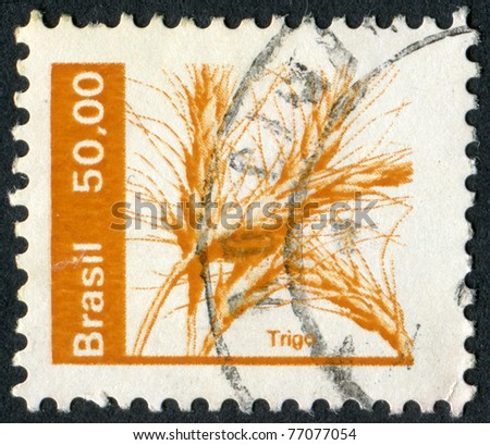 BRAZIL - CIRCA 1979: Postage stamps printed in Brazil, depicted ears of wheat, circa 1979
