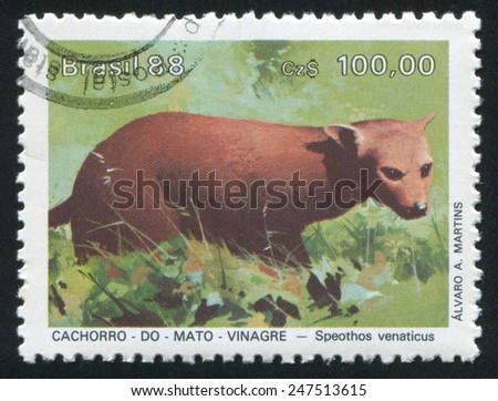 BRAZIL - CIRCA 1988: stamp printed by Brazil, shows  Speothos venaticus, circa 1988 - stock photo