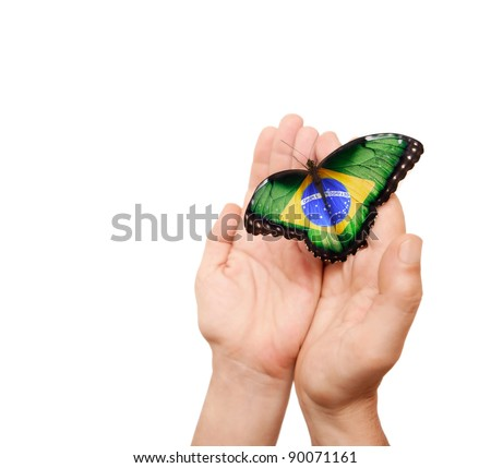 Brazil flag butterfly on a man's hands. - stock photo
