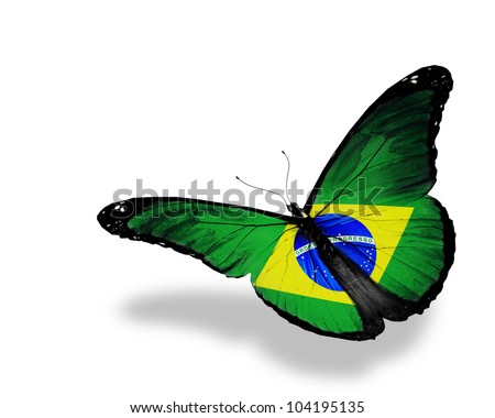 Brazilian flag butterfly flying, isolated on white background - stock photo
