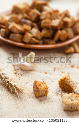 bread croutons with garlic sauce, closeup