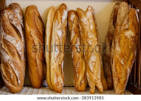 bread group from bakery - stock photo