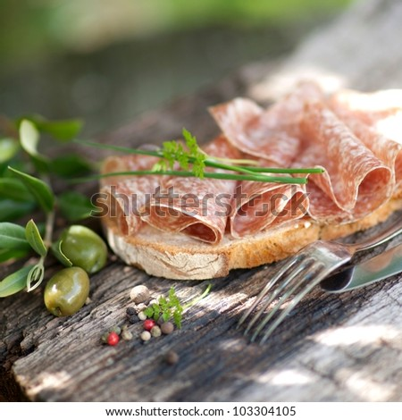 Bread with salami - stock photo