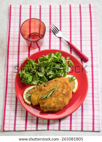 breaded cutlet  with salad - stock photo