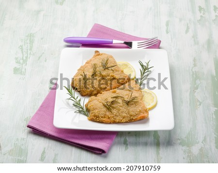 breaded fish fillet - stock photo