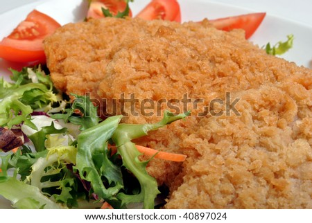 breaded fish steak with organic salad on a plate