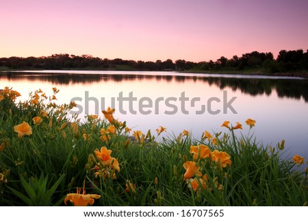 Break of dawn falling upon a flower rimmed lake - stock photo