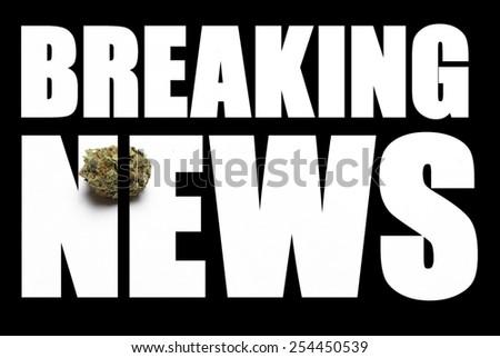 Breaking News, Marijuana  - stock photo