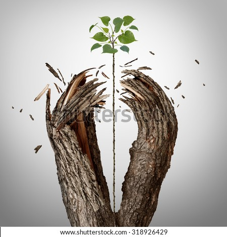 Breaking through concept as a green sapling growing upward and destroying a tree barrier as a business success metaphor for potential ambition and strong will to succeed. - stock photo