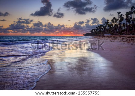 Breaking waves and palm trees beach at pink tranquil sunset - stock photo