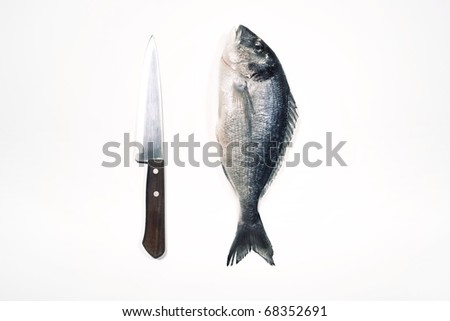 Bream with knife on white background