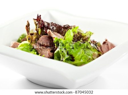 Breast of Duck Salad with Sauce - stock photo