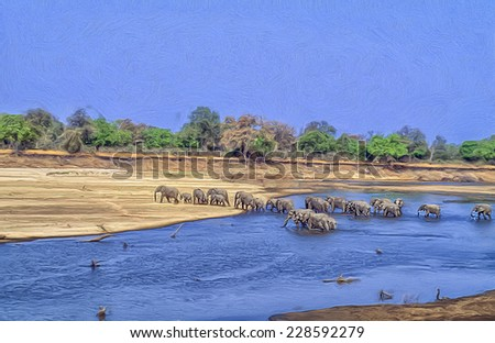 Breeding herd of African elephants crossing Luangwa River, Zambia - stock photo
