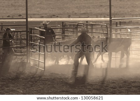 BRICE CANYON CITY, UTAH - JUNE 25: Cowboys with their animals at a rodeo show at Ruby's Inn Bryce Canyon Country Rodeo on June 25, 2011 in Brice Canyon City. - stock photo