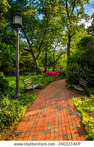 Brick path through a woodland garden at John Hopkins University in Baltimore, Maryland.