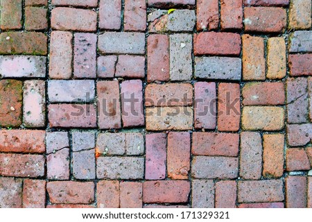 Brick path with different colors stones.