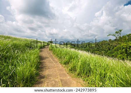 Brick road in the green field with cloudy sky - stock photo