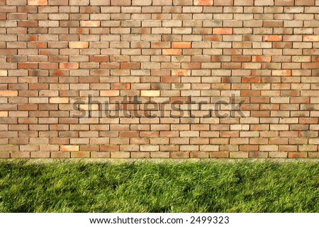 Brick wall and green grass.