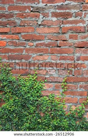 Brick wall and rattan - stock photo