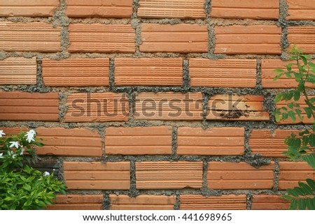 Brick wall and shrubs background