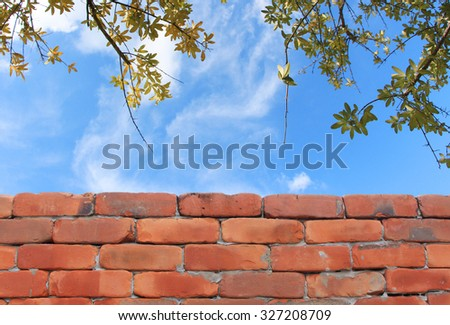 Brick wall and sky background with branches of dry leaves - stock photo