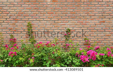Brick wall background with flower - stock photo