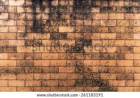 brick wall  texture interior background - stock photo
