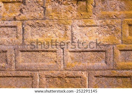 Brick wall with moss growing out of it - stock photo