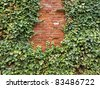 brick wall with plan - stock photo
