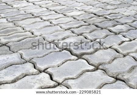 Brick worm on the walkway - stock photo