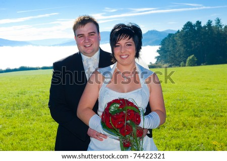 bridal couple in front of landscape - stock photo