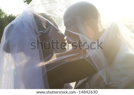 Bridal Couple on their summer wedding day - stock photo