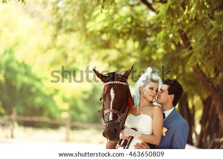 Bride and a groom next to the  horse in the park