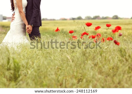 Bride and Groom holding hands in poppies fields - stock photo