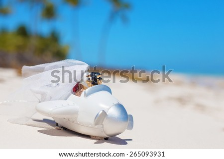 Bride and groom in small wedding plane model on the beach - stock photo