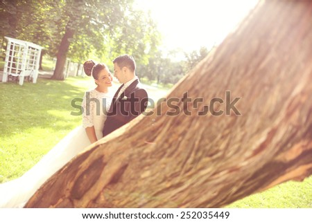 Bride and groom in the sunlight near a tree
