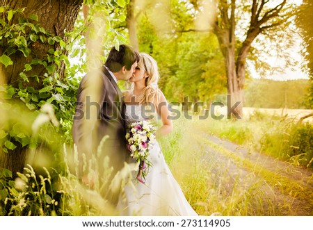 Bride and groom kissing in the park. - stock photo