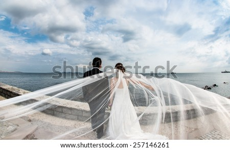 Bride and groom looking to the sea - stock photo