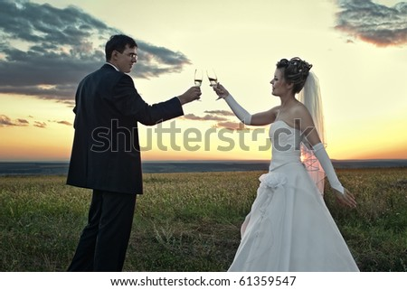 Bride and groom making a toast at sunset in the field outdoors