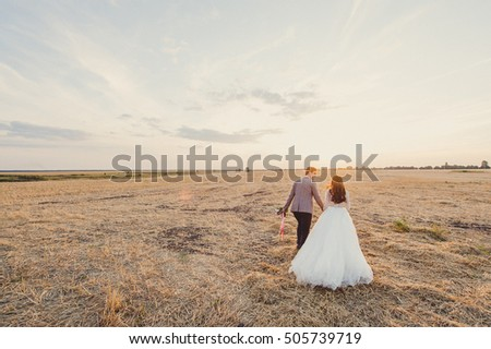 Bride and groom on the field at sunset. Overall plan