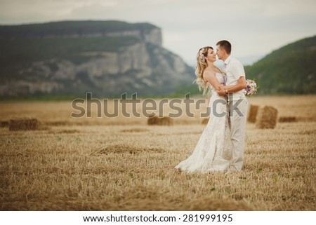 Bride and groom wedding portrait outdoors newlyweds loving couple at field marriage bridal flowers, kissing man and woman at wedding day, selective focus, series  - stock photo