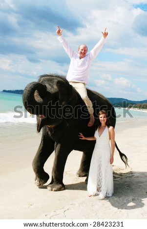 Bride and groom with an elephant on the beach.