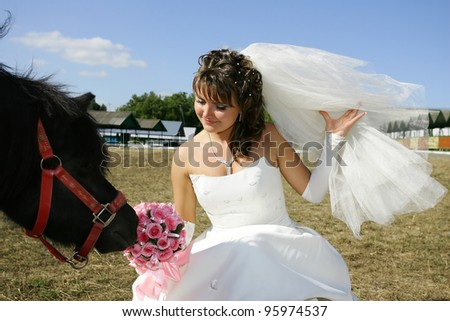 Bride and ponies - stock photo