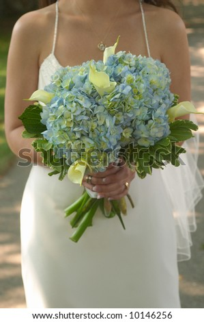 Bride holding bouquet of blue hydrangea - stock photo
