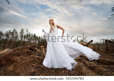 Bride in the woods - stock photo