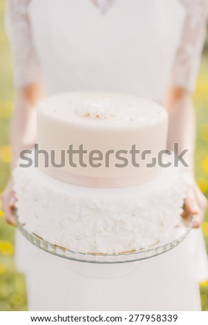 bride in wedding dress holding a beautiful delicious wedding cake - stock photo