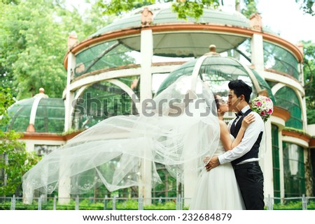 Bride kissing groom, while her veil is fluttering in the wind - stock photo